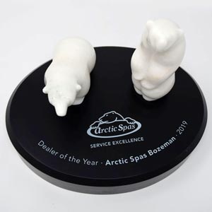 North American Service Award for Arctic Spas Bozeman