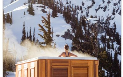 Arctic Spas on the cover of NAC Delivering Performance Magazine December 2019